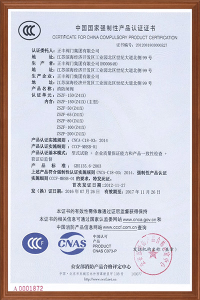 Fire Protection Certificate04