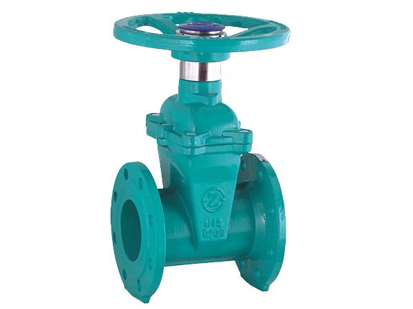 Resilient Gate Valve with Trick Lock
